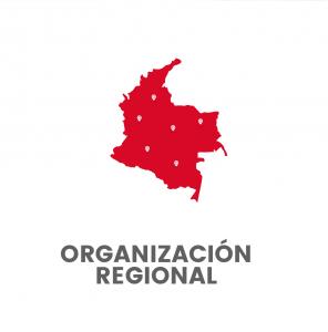 Organización Regional (Directorios a Nivel Nacional)